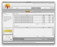SpiderOak, 2 GB gratis para tus copias de seguridad desde múltiples localizaciones
