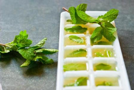 Receta de cubitos de zumo de lima con menta