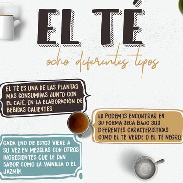 Ocho diferentes tipos de tés y cómo tomarlos