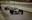 Gran Premio de Japón 1994: Damon Hill se impone bajo el diluvio universal