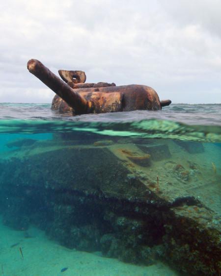 Tanques Naturaleza 12