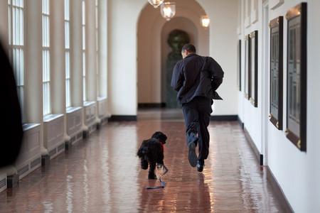 Mejores Fotos Barack Obama Pete Souza 2