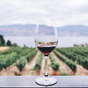 La vinoteca más vendida en Amazon es de Taurus y está rebajadísima hoy