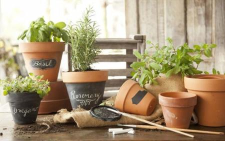 R pidas y f ciles ideas para crear rincones con plantas y - Plantas aromaticas exterior ...