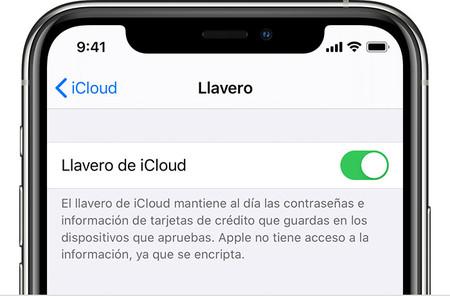 Ios12 Iphone X Settings Icloud Keychain