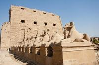 Egipto: descubren esfinges y un camino real