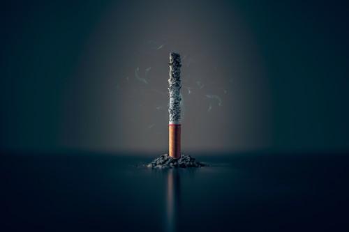 Día Mundial sin Tabaco: esto es lo que hay dentro de un cigarrillo y cómo afecta a tu organismo