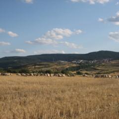 Foto 13 de 35 de la galería sierra-de-albarracin en Diario del Viajero