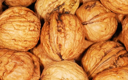 Walnut 101462 1280