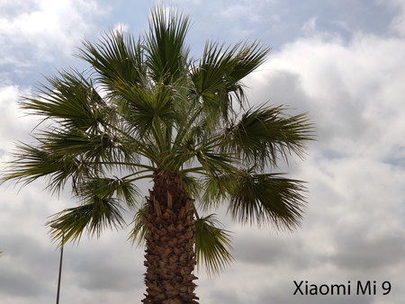 Xiaomi Mi 9 Zoom 01