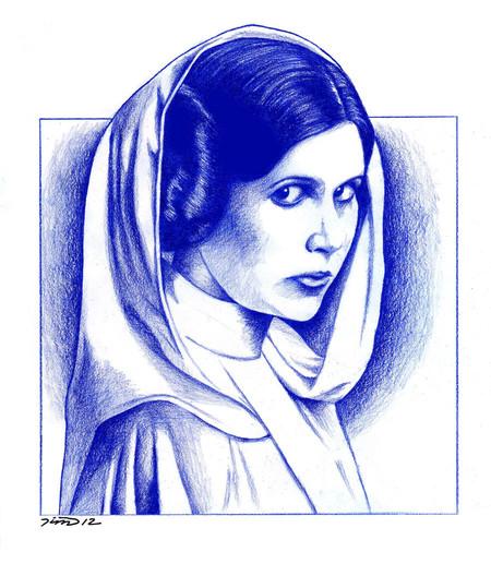 Princess Leia By Misunderstoodtim D4rnsuo