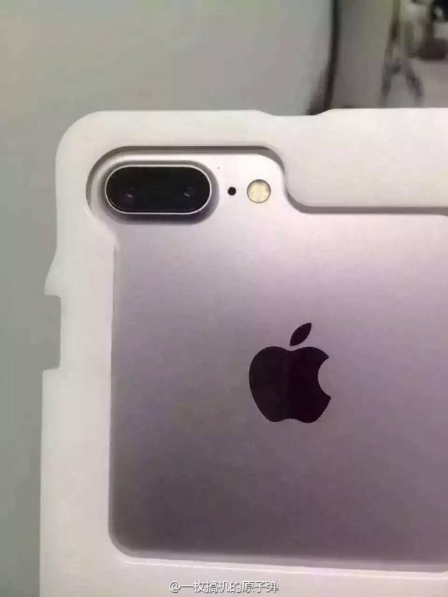 Iphone siete Dual