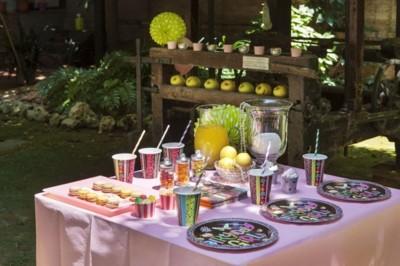 Queen of Scotland te ayuda a organizar una perfecta fiesta temática