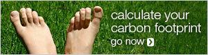 <em>Carbon Footprint</em>: mide el tuyo