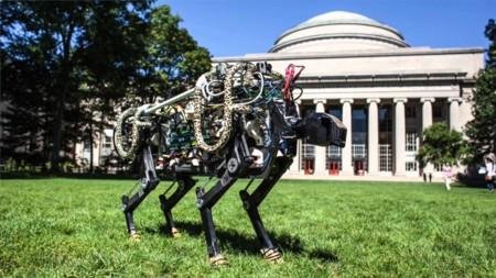 «El mejor trabajo del mundo». Las investigaciones que mantienen en vilo a los ingenieros del MIT