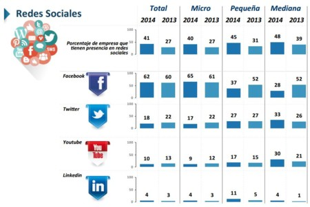 Redes Sociales PYMES 2014