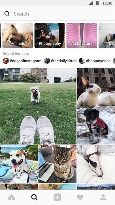 Explore Instagram