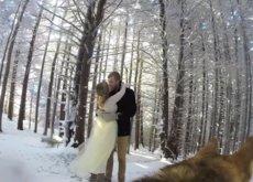 Esta pareja de novios decidió que su boda fuera grabada por su mejor amigo: su perro Ryder