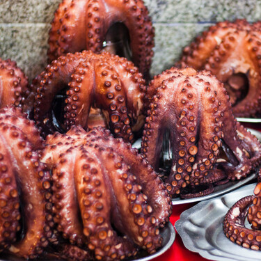 Todo sobre el pulpo: propiedades, temporada y cómo cocinar este molusco (con recetas incluidas)