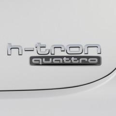 Foto 2 de 8 de la galería audi-a7-sportback-h-tron-quattro en Motorpasión México