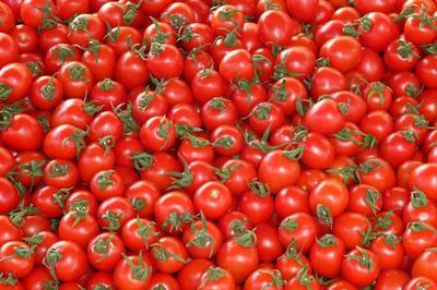 Los estadounidenses tiran el 31% de todos los tomates que compran