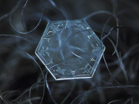Alexey Kljatov Snowflakes 5