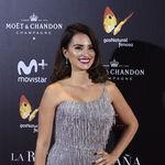 Una majestuosa Penélope Cruz conquistó la alfombra roja del estreno La Reina de España en Madrid