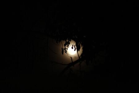 Luna De Fresa Como Fotografiarla 06