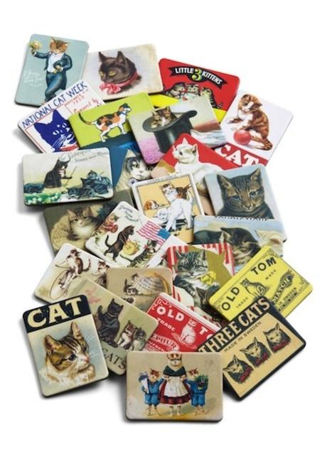set imanes gatos