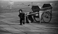 Relación entre el trabajo infantil y la educación