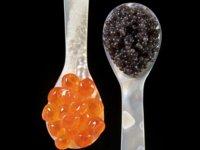 Los aminoácidos y donde encontrarlos (XIII)