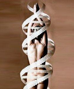 La dieta de ADN