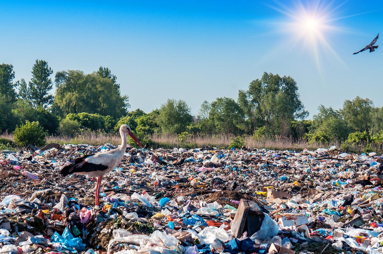 Coca-Cola, Nestlé, Unilever y un total de 250 compañías alimentarias se comprometen a acabar con los envases...