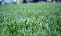 Mantenimiento del jardín a coste 0 empleando césped artificial