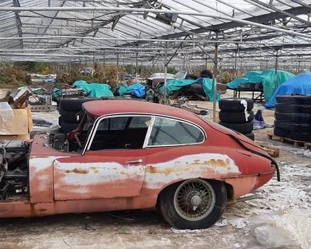 Treinta autos Jaguar clásicos fueron encontrados en un invernadero