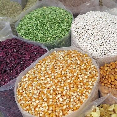 Semillas en México. Cómo una semilla nativa da estabilidad a la alimentación
