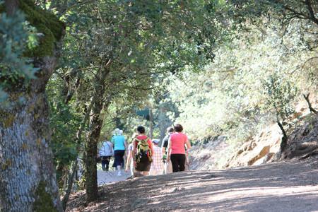 A Pasaeando Por Valle Piron