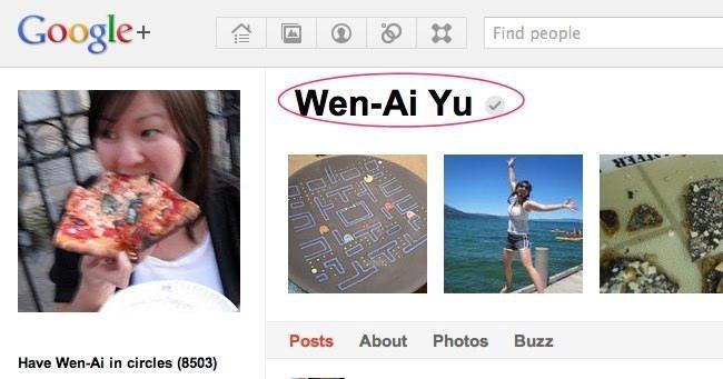 Google+ añade verificación de perfiles