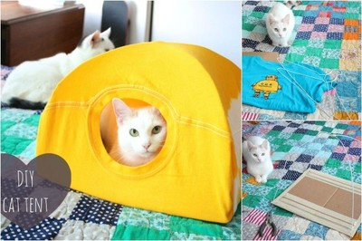 Una tienda para tu gato con una camiseta