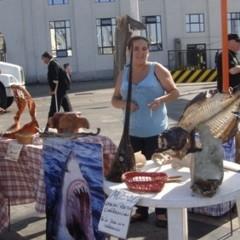 Foto 10 de 10 de la galería valparaiso-chile en Diario del Viajero