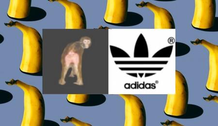 Han entrenado a monos para que les gusten los logos de marcas con fotos de macacos sexys al lado del logo