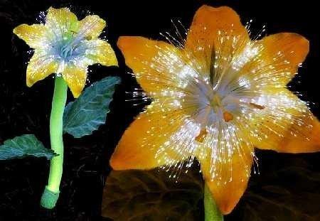 Flores que iluminan