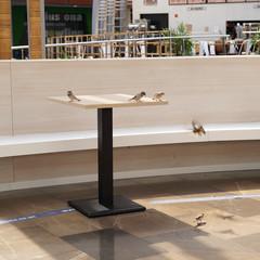 Foto 23 de 54 de la galería galeria-de-muestras-sony-a7c en Xataka Foto