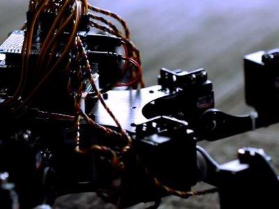 Hexapet, una mascota robótica un tanto espeluznante