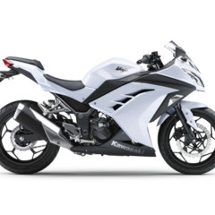 Foto 15 de 58 de la galería kawasaki-ninja-250r-2013-cambio-radical-para-la-mas-pequena-de-la-familia en Motorpasion Moto
