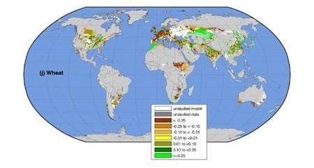 El rendimiento en los 10 principales cultivos del mundo empieza a reducirse debido al cambio climático