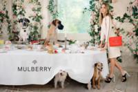 Mulberry verano 2014