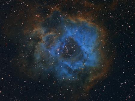 Stellar Flower