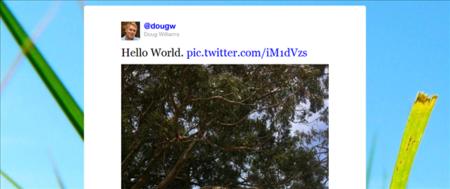 La plataforma de fotos de Twitter ya tiene nombre, fecha y primeras imágenes