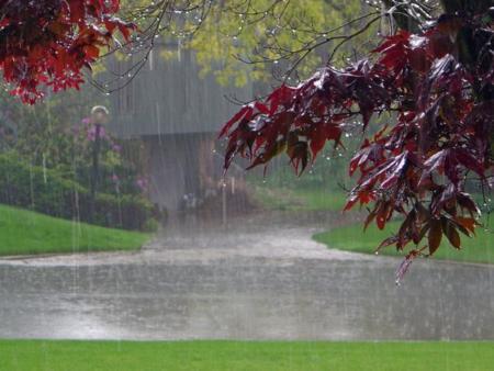 5 consejos para correr bajo la lluvia